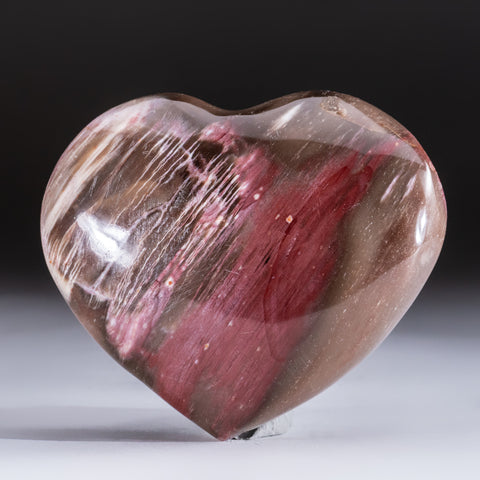 Petrified Wood Heart from Madagascar (315 grams)