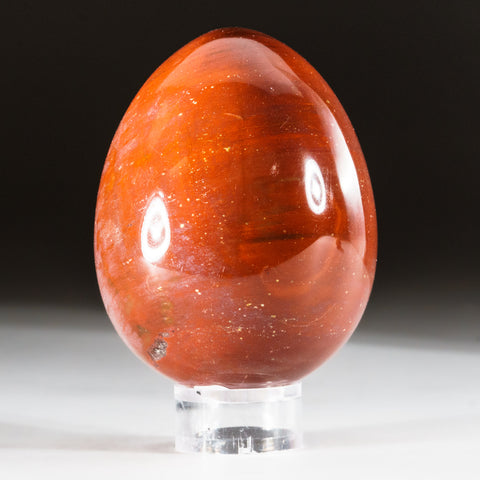 Polished Petrified Wood Egg from Madagascar (315 grams)