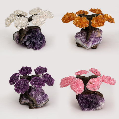 Small Four Set of Gemstone Trees (6 petals) on Amethyst Matrix