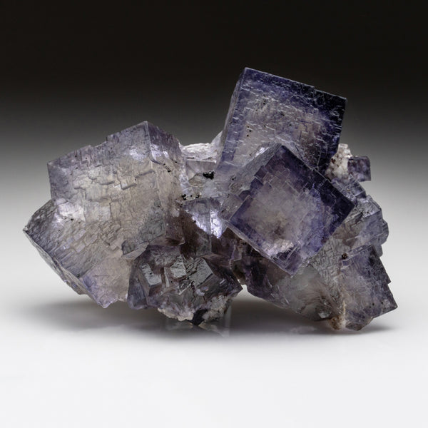 Purple Fluorite from Elmwood Mine, Carthage, Smith County, Tennessee (2 lbs)
