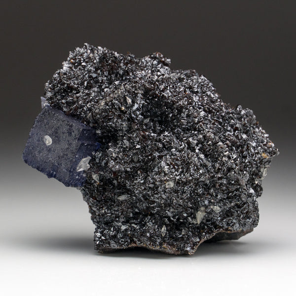 Purple Fluorite on Sphalerite from Elmwood Mine, Carthage, Smith County, Tennessee (2 lbs)
