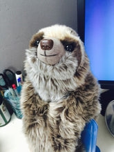 Load image into Gallery viewer, Sloth Plush