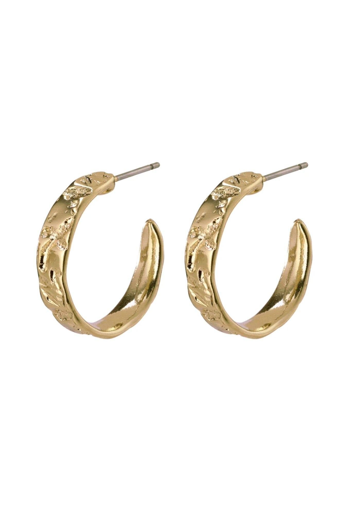 Pilgrim Compassion Earrings Gold Plated