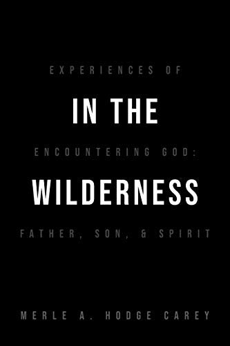 In the Wilderness: Experiences of Encountering God: Father, Son, and Spirit