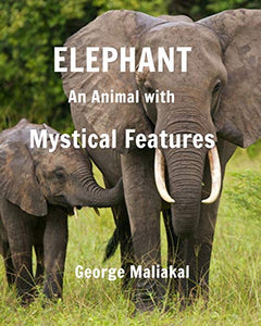 Elephant - An Animal with Mystical Features