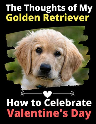The Thoughts of My Golden Retriever: How to Celebrate Valentine's Day