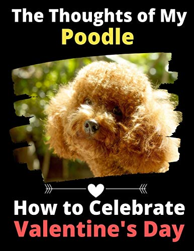 The Thoughts of My Poodle: How to Celebrate Valentine's Day