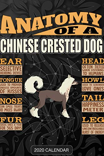 Anatomy Of A Chinese Crested Dog: Chinese Crested Dog 2020 Calendar - Customized Gift For Chinese Crested Dog Dog Owner