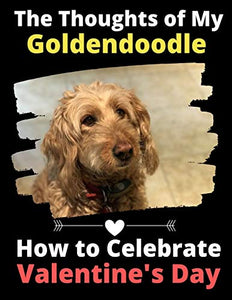 The Thoughts of My Goldendoodle: How to Celebrate Valentine's Day