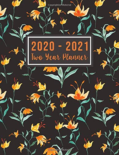 2020-2021 Two Year Planner: 2 year academic monthly planner | 24 Months Agenda Planner with Holiday from Jan 2020 - Dec 2021 Large size  8.5 x 11 ... for Women (2 year monthly planner 2020-2021)
