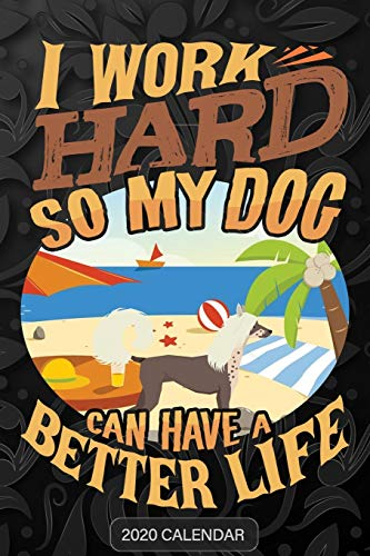 I Work Hard So My Dog Can Have A Better Life: Chinese Crested Dog 2020 Calendar - Customized Gift For Chinese Crested Dog Dog Owner