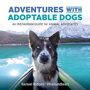 Adventures with Adoptable Dogs: An Instagram Guide for Animal Advocates