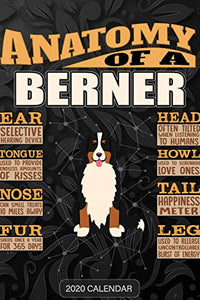 Anatomy Of A Bernese Mountain Dog: Berner 2020 Calendar - Customized Gift For Berner Dog Owner