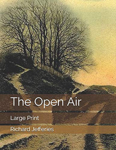 The Open Air: Large Print