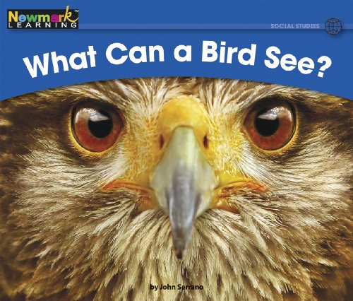 What Can a Bird See? (Rising Readers (En))