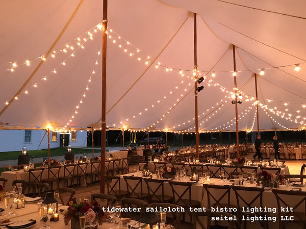 White Bistro Lights: 2 @ 100 ft strands plus 400 feet off the bulk spool