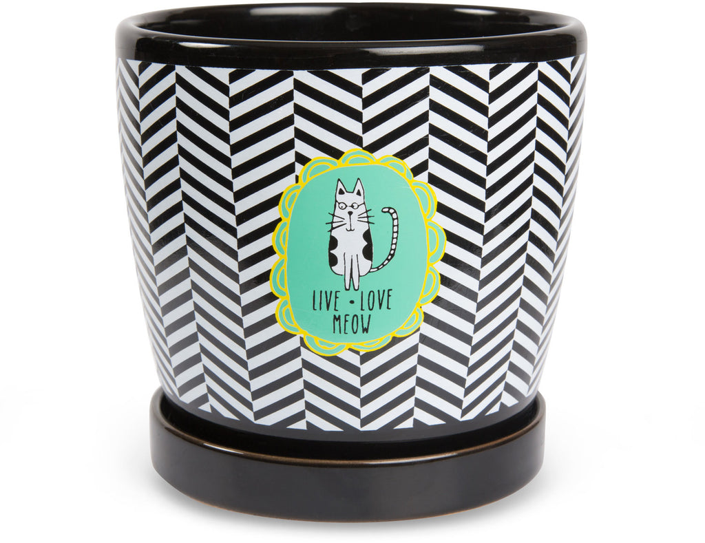 "Live Love Meow - 5"" Planter Pot with Saucer by It's Cats and Dogs - Beloved Gift Shop"