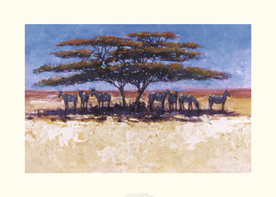 Zebra in the Shade Jonathan Sanders Art Print Posters & Prints - Beloved Gift Shop