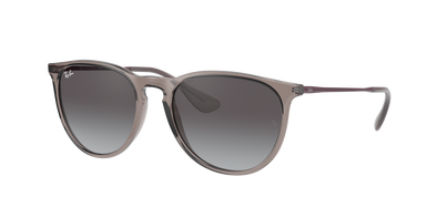 Ray-Ban - RB4171 Erika Color Mix
