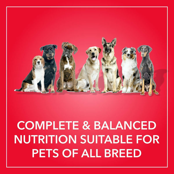 PUREPET ADULT MEAT & RICE DOG FOOD