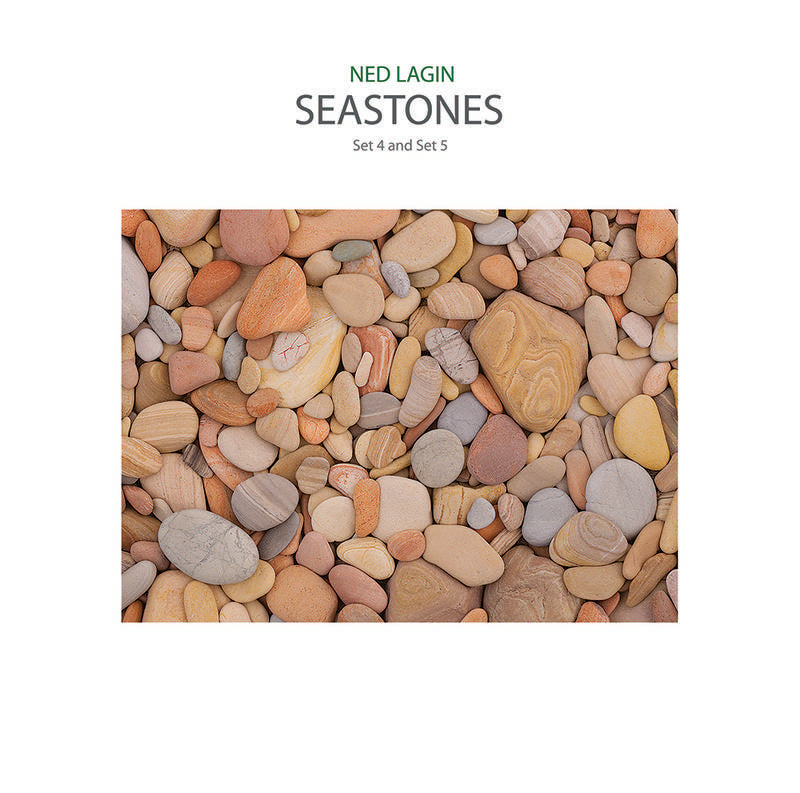 Ned Lagin - Seastones (Set 4 and Set 5) LP