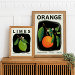 Bundle Pack of Three 11x14 inches Flowering Fruit Posters - Jordan McDowell - art print - painting - home decor