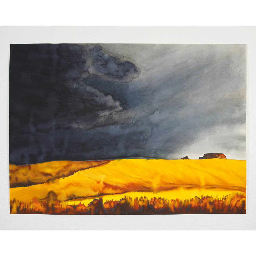 Maru | Stormy Fields Collection | SOLD - Jordan McDowell - art print - painting - home decor