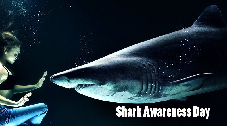 15 Things You Should Know About Sharks