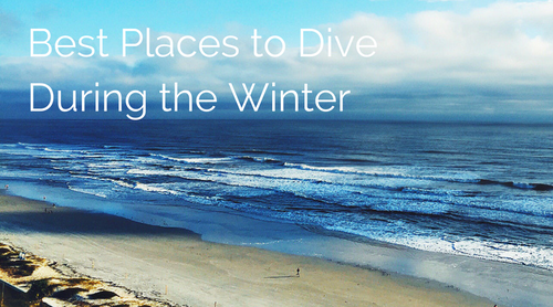 places to scuba dive during winter