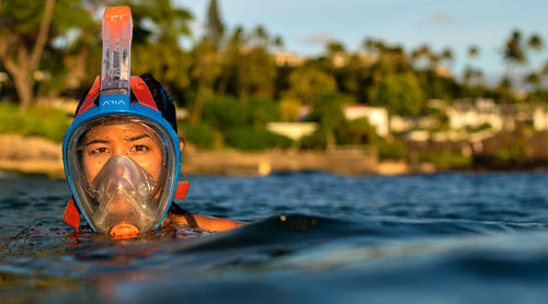 full-face snorkeling mask sizing and care