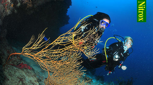 Benefits and Risks of Diving With Nitrox