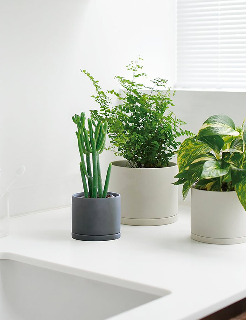 Kinto Plant Pot 191 (105mm) - Dark Grey