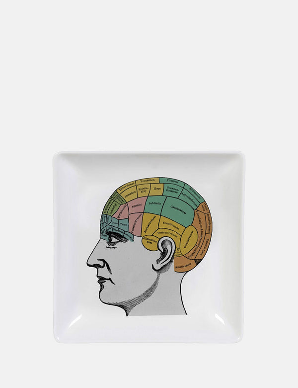 Cubic Phrenology Trinket Tray - White - Article