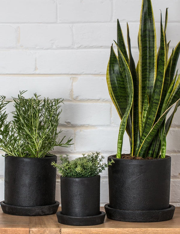 Dassie Artisan Terra Planter - Coal - Article