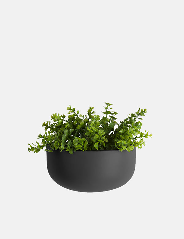 Present Time Oval Wall Plant Pot (Wide) - Black
