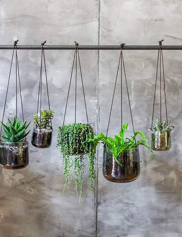 Nkuku Viri Hanging Planter (Large) - Clear Hammered Glass