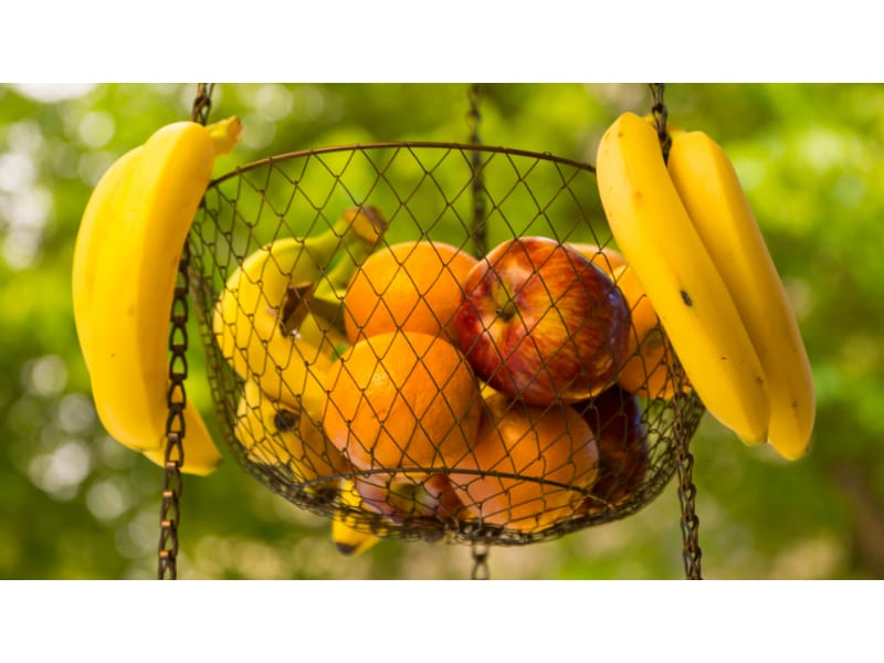 Fruits hanging in a basket outdoors