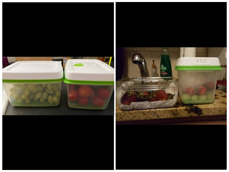 Rubbermaid Produce Keeper Food Storage Container review