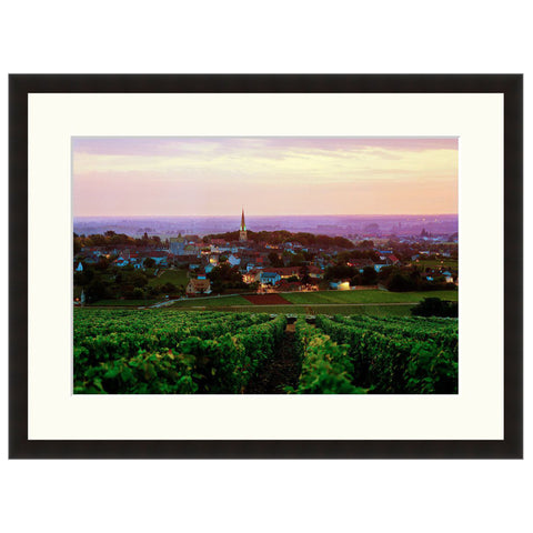 Burgundy Vineyard  - Fine Art Photograph by Andy Katz  - Framed Wall Art