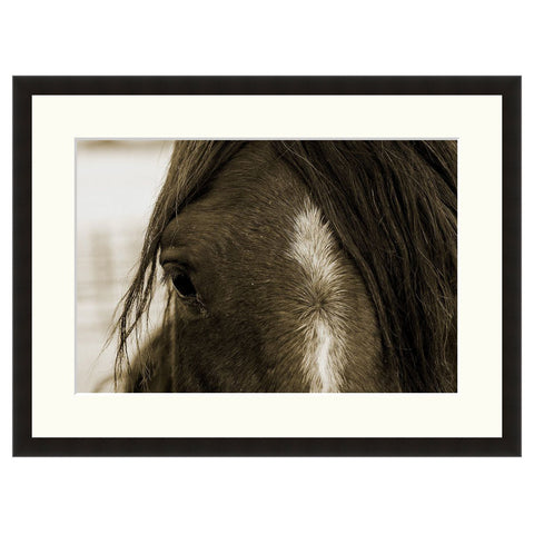 Sweeter Than Wine  - Fine Art Photograph by Howard Paley  - Framed Wall Art