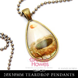 Clear Teardrop Glass 20x30