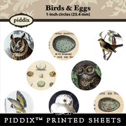 Piddix  - 1 Inch Collage Sheets - Birds & Eggs - Circle