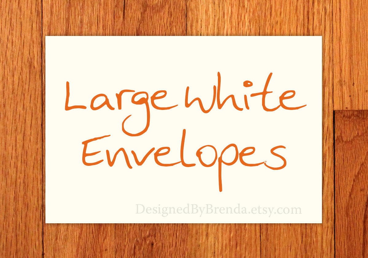 Large White Envelopes - 6 x 9 inches