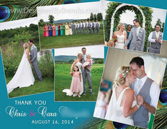 Peacock Feather Wedding Thank You Postcards
