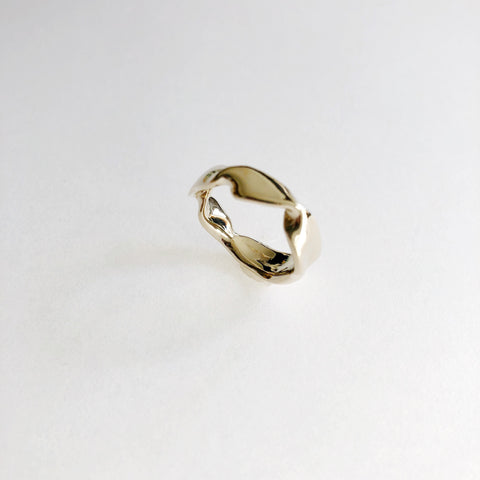 Large DEMETER Ring