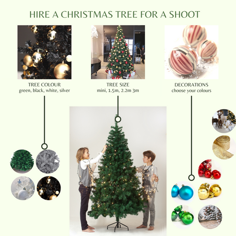 Hire a Christmas tree for a photoshoot