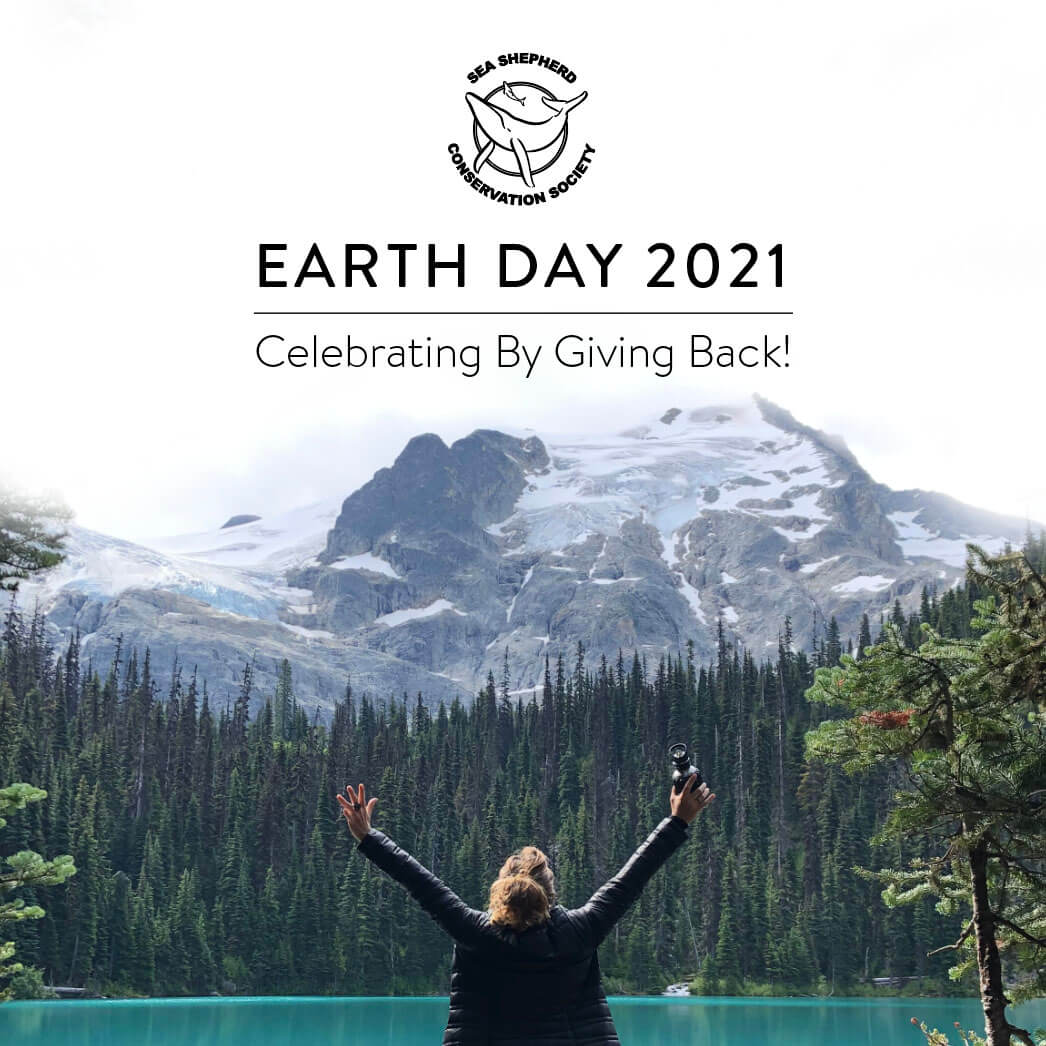 Celebrate Earth Day 2021 With MOBOT & Sea Shepherd