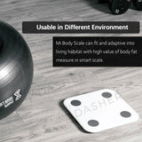 Smart Scale V2