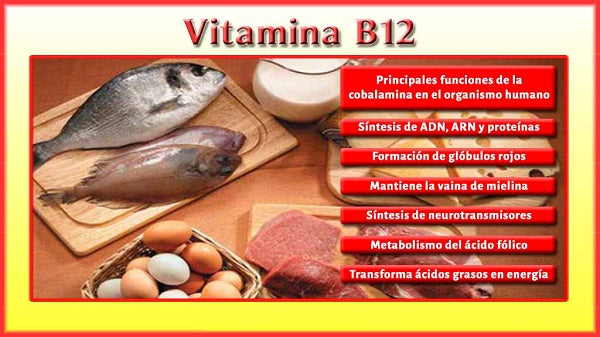 vitamina b12 beneficios e maleficios