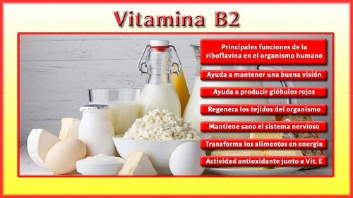 Beneficios Vitamina B2